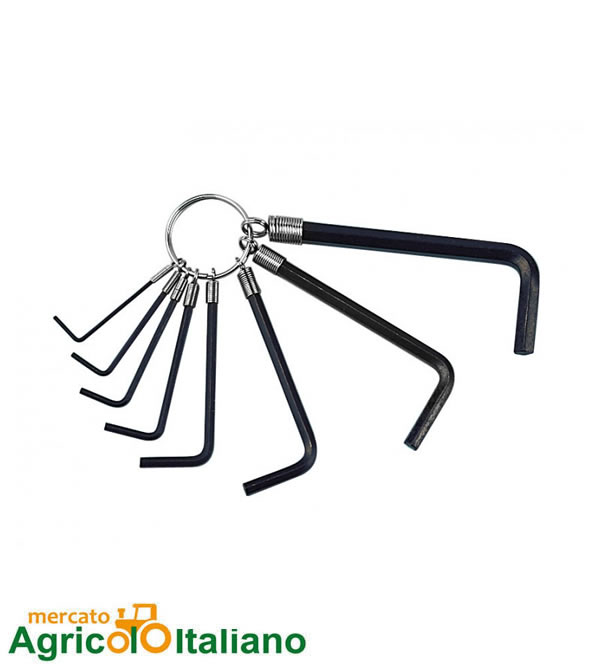 Set 8 Pz chiavi a Brugola Lampa